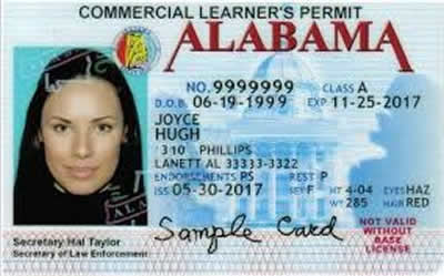 Image of Alabama's Driver's License