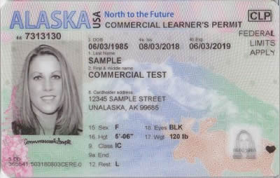 Image of Alaska's Driver's License