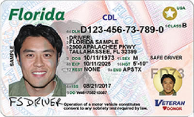 Image of Florida's Driver's License