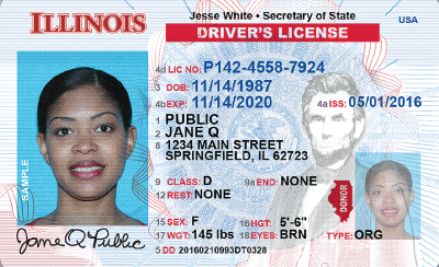 Image of Illinois's Driver's License