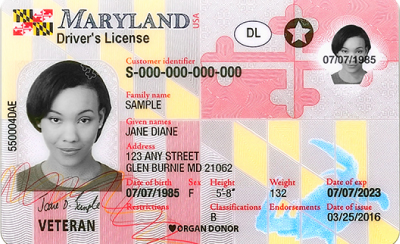 Image of Maryland's Driver's License