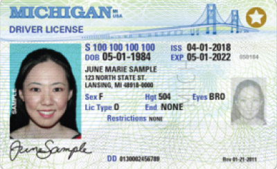 Image of Michigan's Driver's License