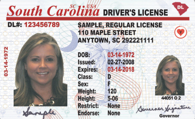 Image of South Carolina's Driver's License